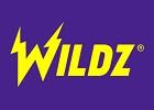 wildz no logo